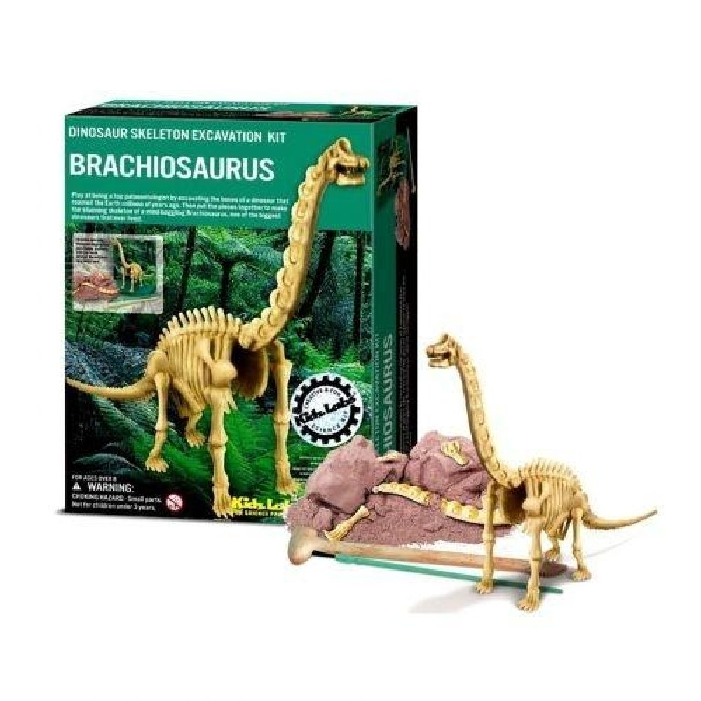 BRACHIOSAURUS SKELETON EXCAVATION