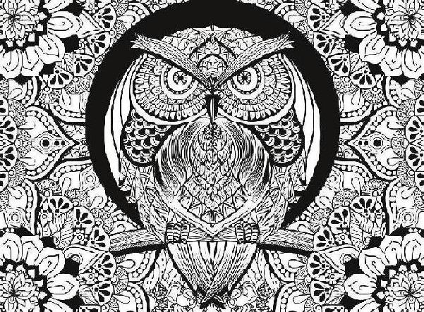 COLOR THERAPY OWL